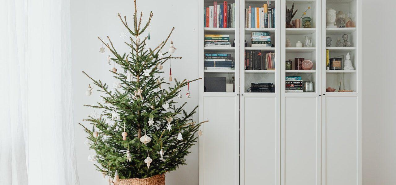 storage ideas in tiny home